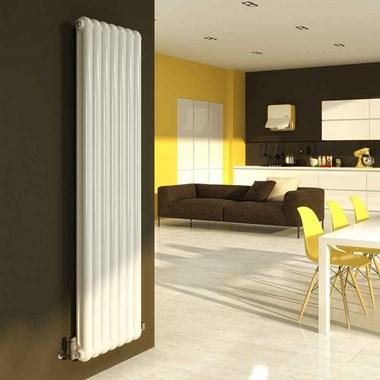 DQ Heating Cassius Column Style Mild Steel Vertical Designer Radiator